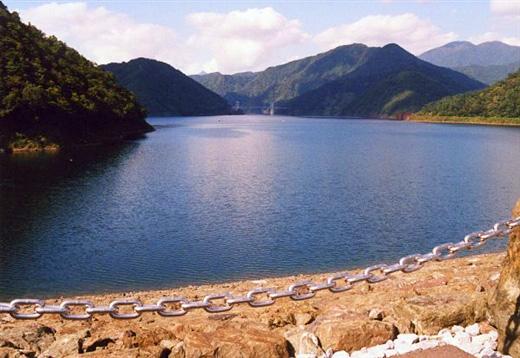 徳山ダムの竣功式 - ダム便覧 [戻る] [ダム便覧] [Home] 《このごろ》徳山ダムの竣功